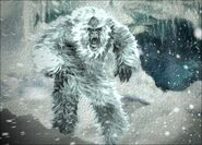 Light Coat Yeti