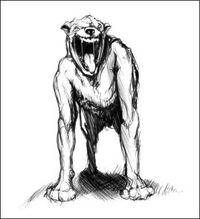 Nandi bear