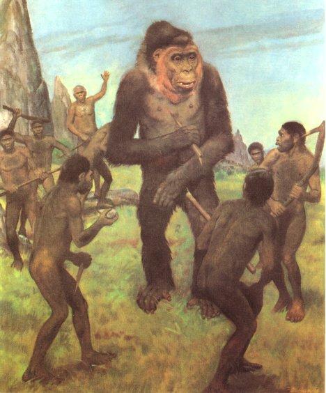 Gigantopithecus Gigantopithecus being   wiped