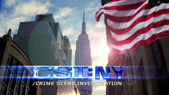 Portal:CSI:_NY_Writers