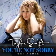 You-re-Not-Sorry-CSI-Remix-Official-Single-Cover-fearless-taylor-swift-album-14877895-600-600
