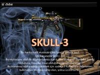 Skull3 turkey poster