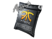 Csgo-cologne2015 fnatic