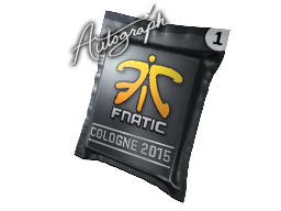 File:Csgo-cologne2015 fnatic.png
