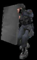 P shield beta4