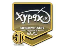 File:Csgo-cluj2015-sig xyp9x large-10-23.png