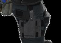 P p250 holster