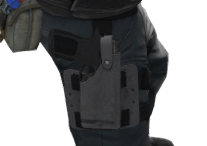 File:P p250 holster.png