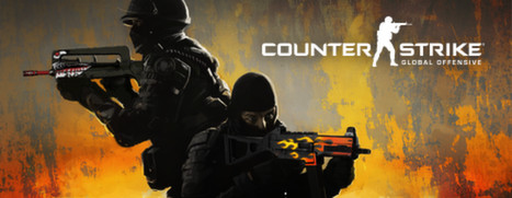 Counter Strike Net