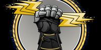 Glove Case