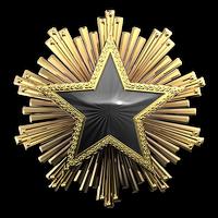 Csgo-service medal 2016 7