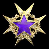Csgo-service medal 2015 lvl2