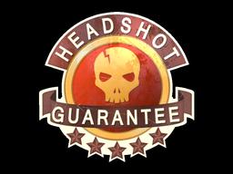 File:Csgo-sticker-headshot guarantee.png