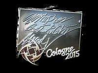 Csgo-col2015-sig getright foil large