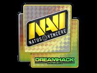 Csgo-dreamhack2014-navi holo large
