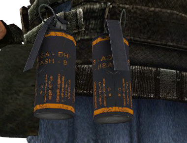 File:P flashbang holster double css.png