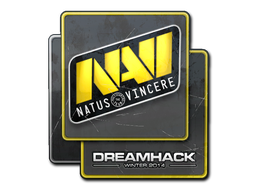 File:Csgo-dreamhack2014-navi large.png