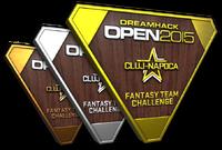 Csgo-cluj 2015 fantasy trophies