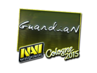 Csgo-col2015-sig guardian foil large