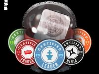 Csgo-stickers-team roles capsule