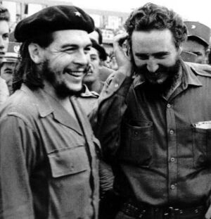 Che and fidel castro.jpg