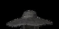 Evangelist Hat