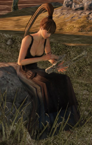 File:Stone Trader Chloanne.png
