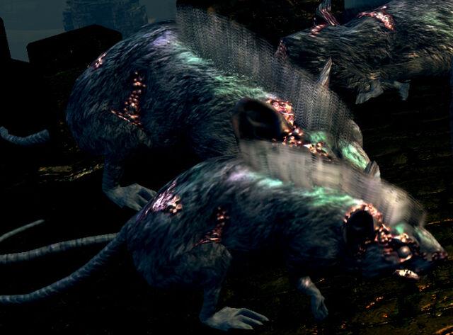File:Undead rats.jpg