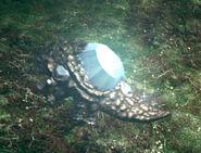 Crystal lizard vanashing