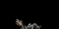 Rubbish (Dark Souls III)