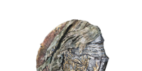 Hawkwood's Shield