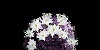 Blooming Purple Moss Clump (Dark Souls III)