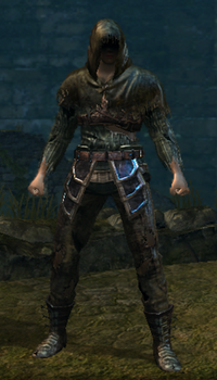 Hollow Thief Set Male