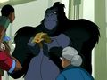 Grodd display.png