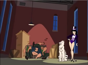 Hold That Tiger Zatanna & his tiger