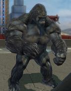 Gorilla Technician