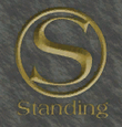 Standing-Vice-Point-Logo 2, VC.png