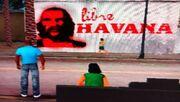 Little Havanna.jpg