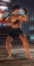 DOA5 Akira Fighter Screen