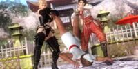 Dead or Alive 5 Ultimate/Tag Throws