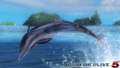 Zack island - Dolphin - screen by AdamCray and AgnessAngel