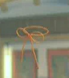 File:DOAXBVRibbonBracelet(Orange).jpg