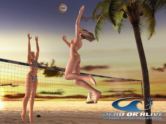 File:Xtreme-beach-volleyball-1.jpg