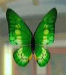 File:DOAXBVButterflyHairClip(Green).jpg