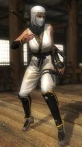 DOA5LR costume Ninja Clain Vol 3 Lisa