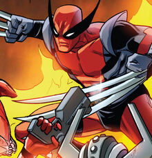 Wolverinepool