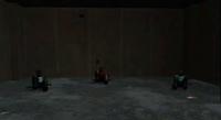 Dead rising the hatchetman captives