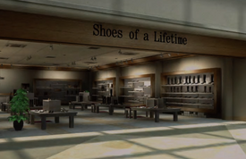 Shoes of a Lifetime