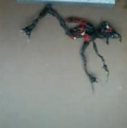 Adaptor Leaper