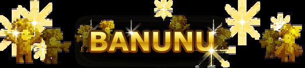 Banunu Banner